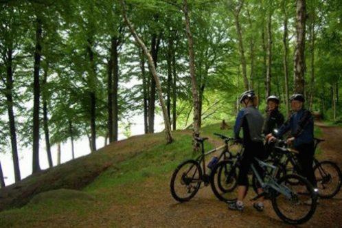 DK_Juetland_Bike_VisitAarhus-498x373
