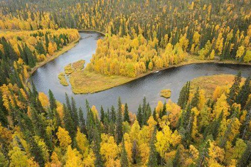 Finnland - Oulanka Steffan Widstrand1
