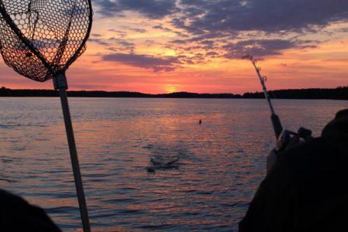fishing_finland-600x400